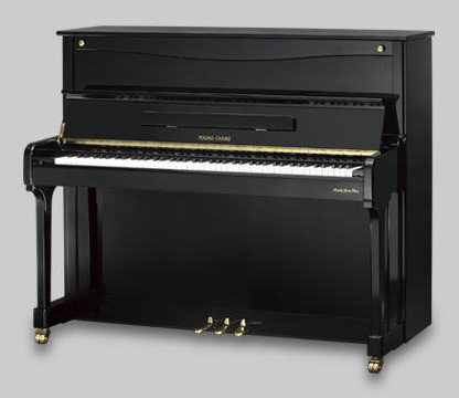 英昌钢琴YP123L1 BP